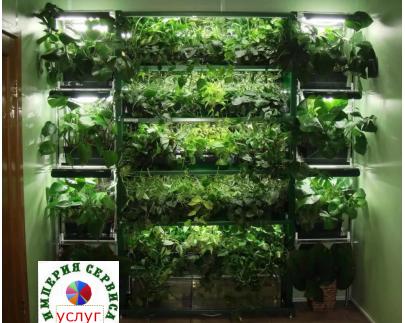 Фитосистемы - минидачи для растений с освещением и автополивом - продажа, установка, обслуживание -