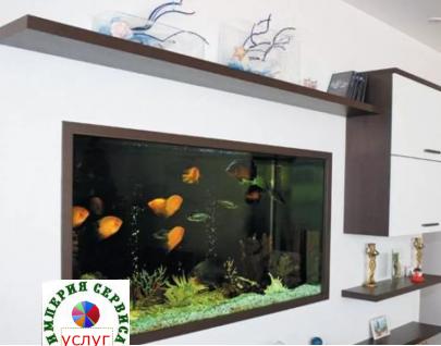 Установка, запуск, обслуживание аквариума
