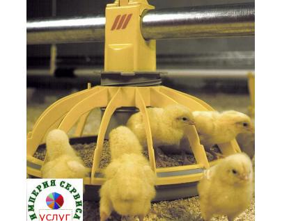 Установка и техническое обслуживание оборудования для выращивания птиц, животных, пчел, рыбы